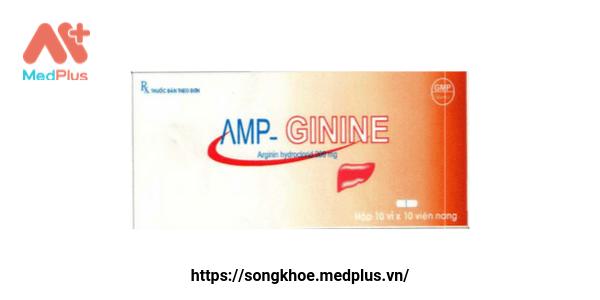 Amp - Ginine